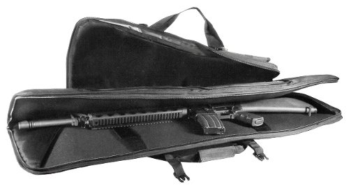gun_case_amazon02_16